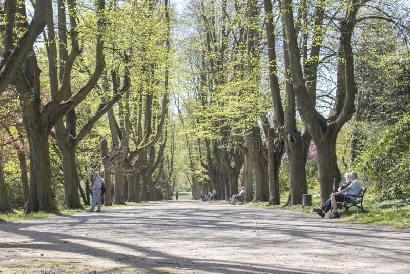 多特蒙德,德国鲁尔区,北部莱茵河西华里亚,德国- 2018年4月16日:龙贝格公园是欧洲庭院网络的一部分 库存照片