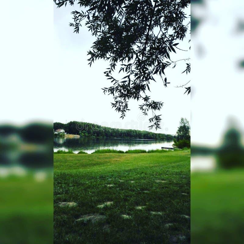 多瑙河在南奥地利晴天 免版税库存照片