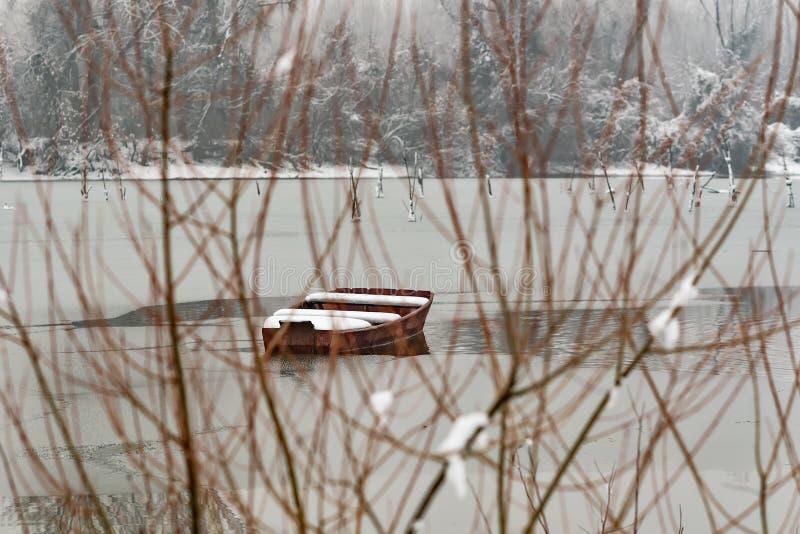 多瑙河海岛Å在诺维萨德,塞尔维亚附近的odroÅ ¡ 与多雪的树的五颜六色的风景,美丽的冻河 用s盖的小船 免版税库存图片