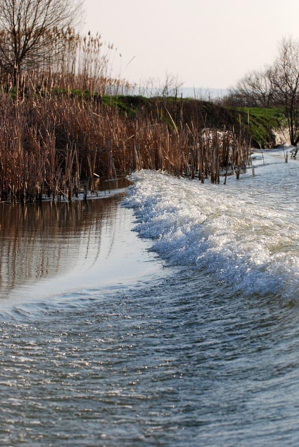 多瑙河Delta河 免版税图库摄影