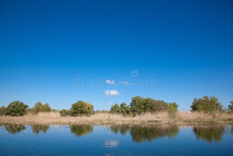 多瑙河Delta 免版税库存图片