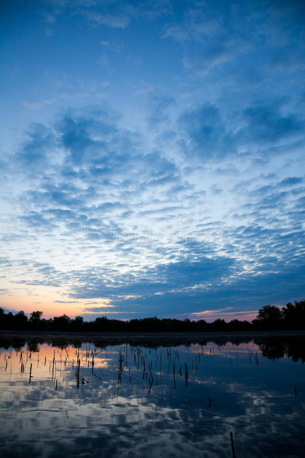 多瑙河Delta 图库摄影