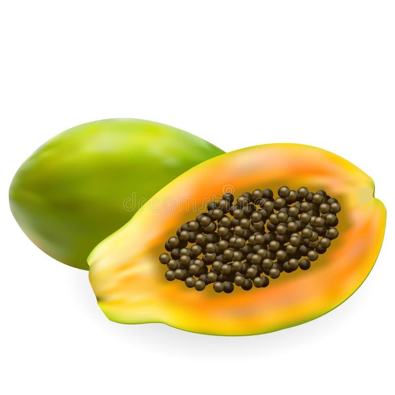 水多的成熟番木瓜和半番木瓜 向量例证