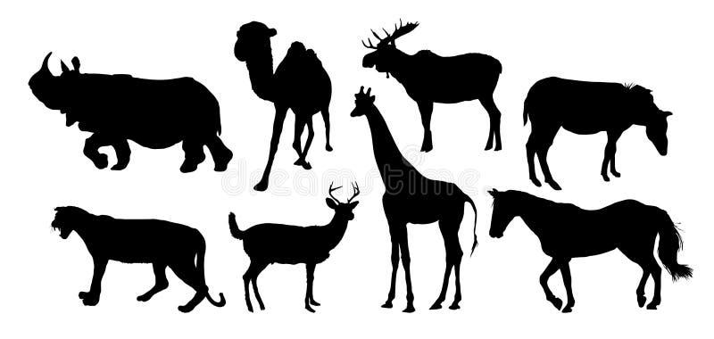 多种动物 向量例证