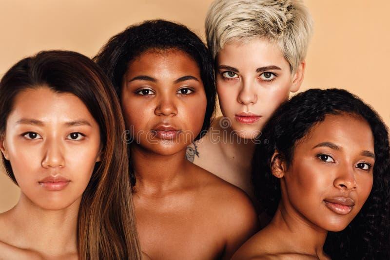 多种族妇女秀丽画象  库存图片
