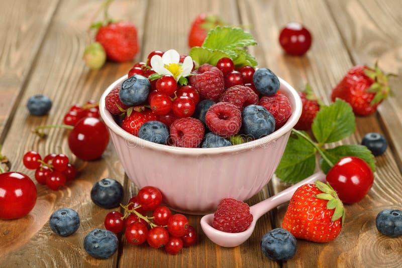 多种浆果 免版税库存照片