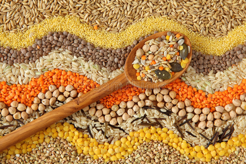 多种谷物种子 免版税库存照片
