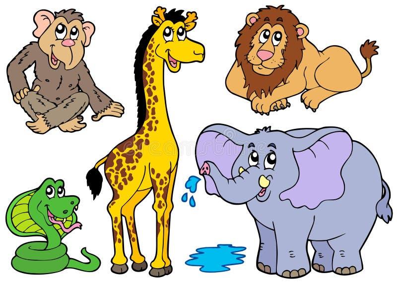 多种非洲动物 库存例证
