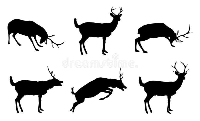 多种驯鹿 向量例证