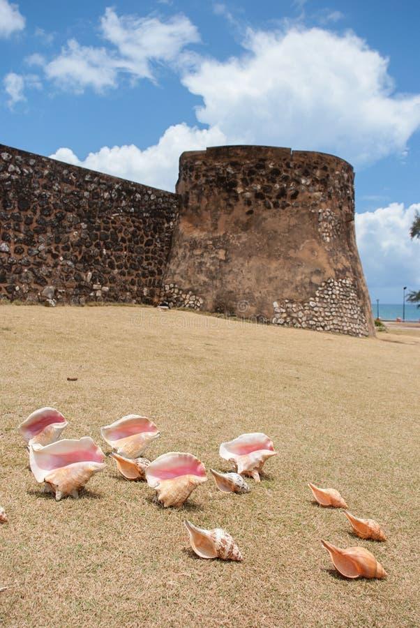 多米尼加共和国 免版税库存图片