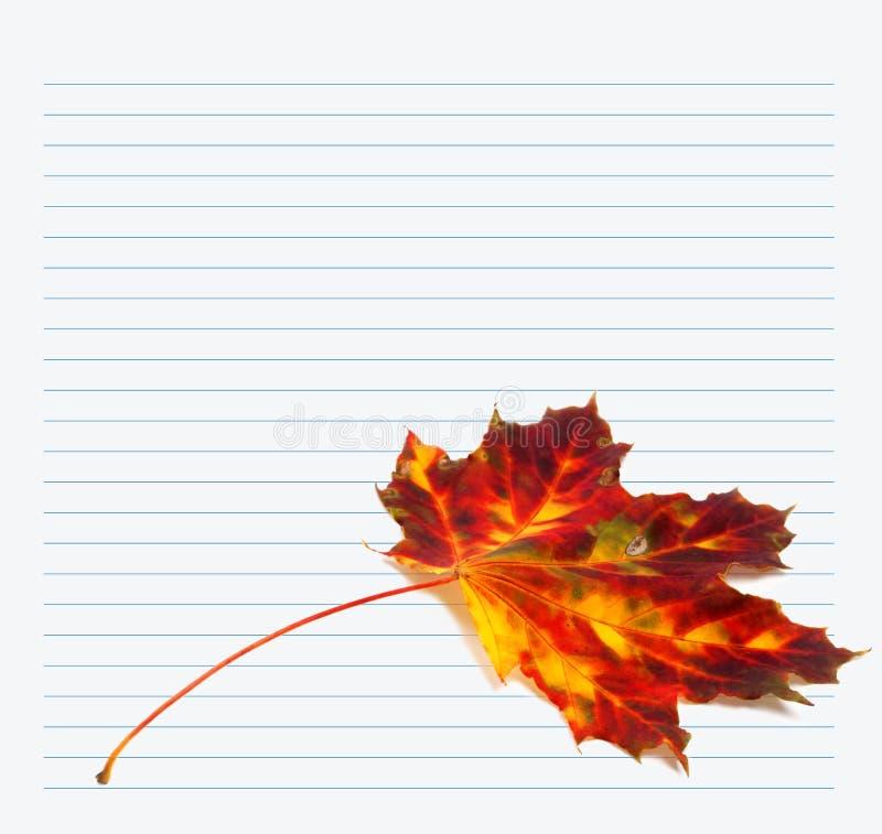 多色秋天槭树叶子和笔记本纸 免版税库存照片