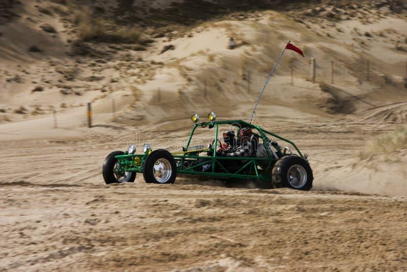 多虫的沙丘 免版税库存照片