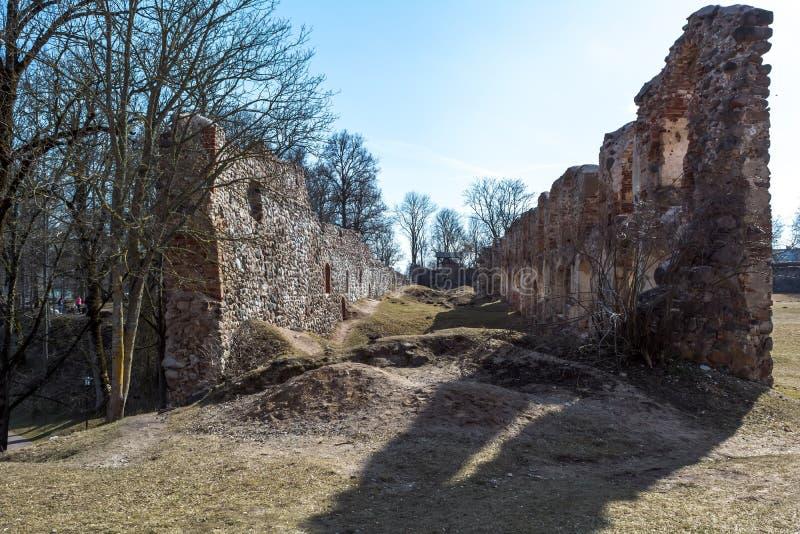 多贝莱城堡废墟  免版税库存照片