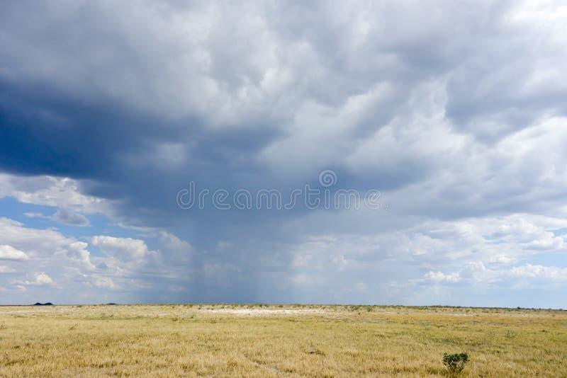 多雨天气 库存照片