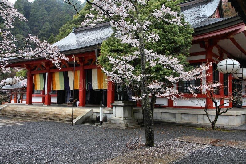 多雨日本 库存照片