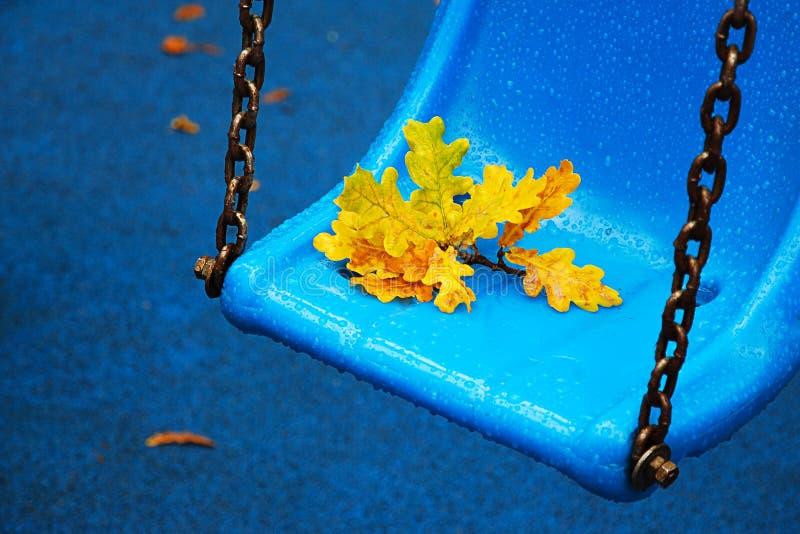 多雨秋天天在城市公园 在雨珠的明亮的蓝色公园摇摆与黄色橡木叶子 免版税库存图片