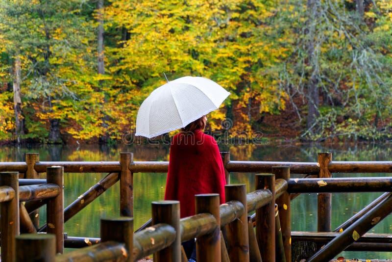 多雨秋天的日 免版税库存照片