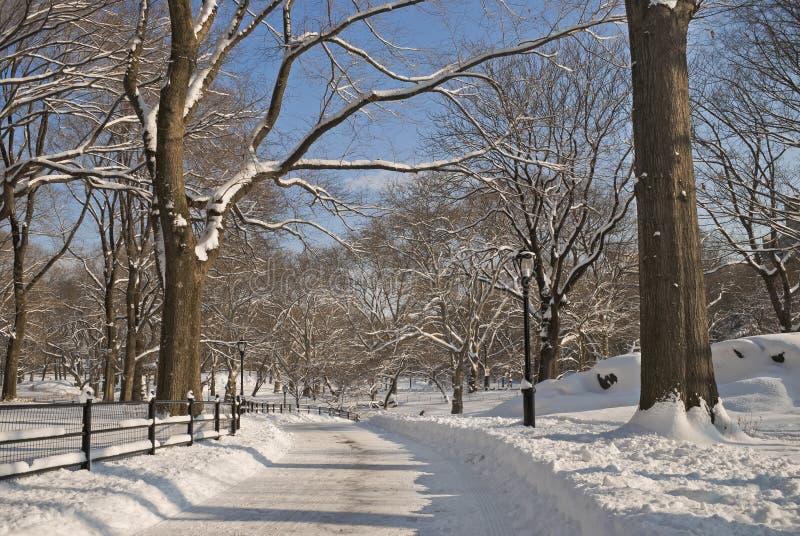多雪中央公园的路 免版税图库摄影