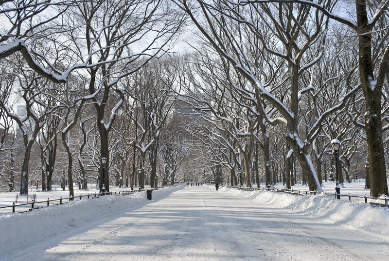 多雪中央购物中心的公园 免版税库存图片