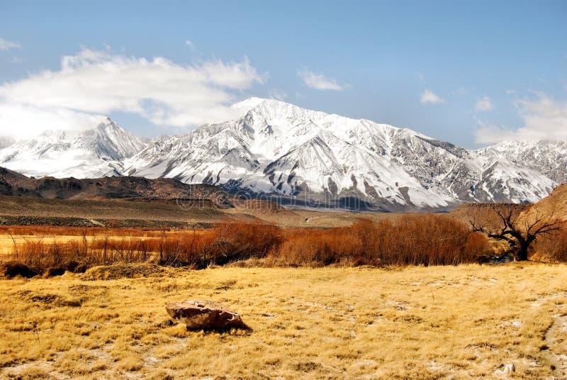 多雪全部的山 免版税库存图片