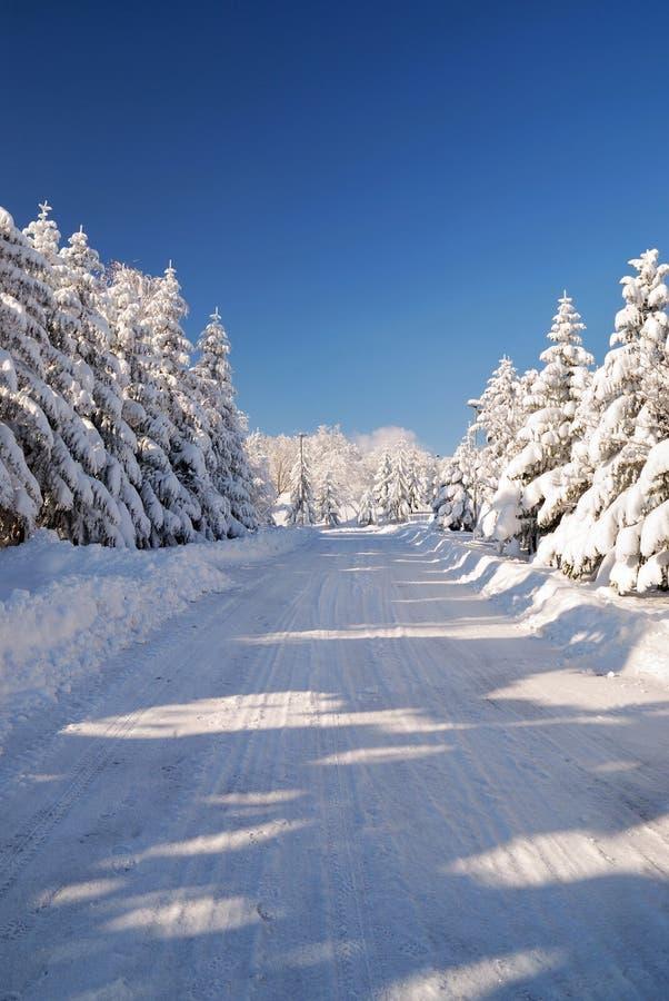 多雪山的路 图库摄影
