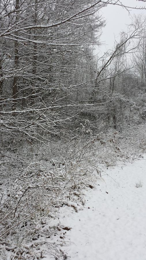 多雪的天 免版税库存图片