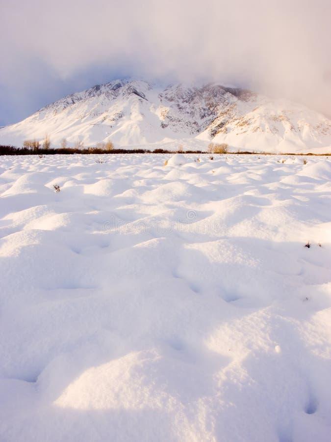 多雪的早晨 免版税库存照片