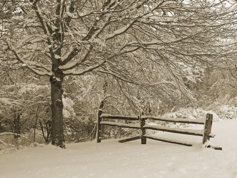 多雪的范围 免版税库存图片