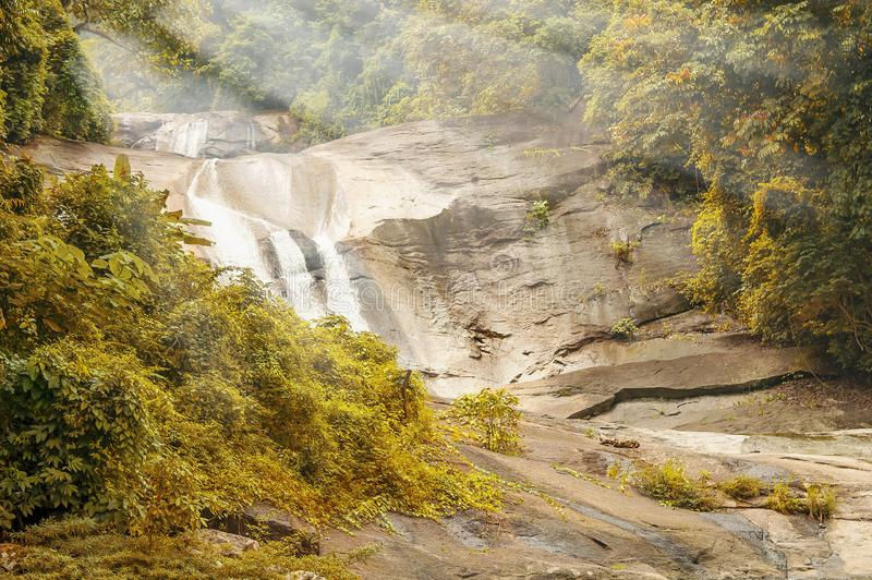 多颜色树叶子的石河在森林,水秋天里在有光束的森林里 免版税库存图片
