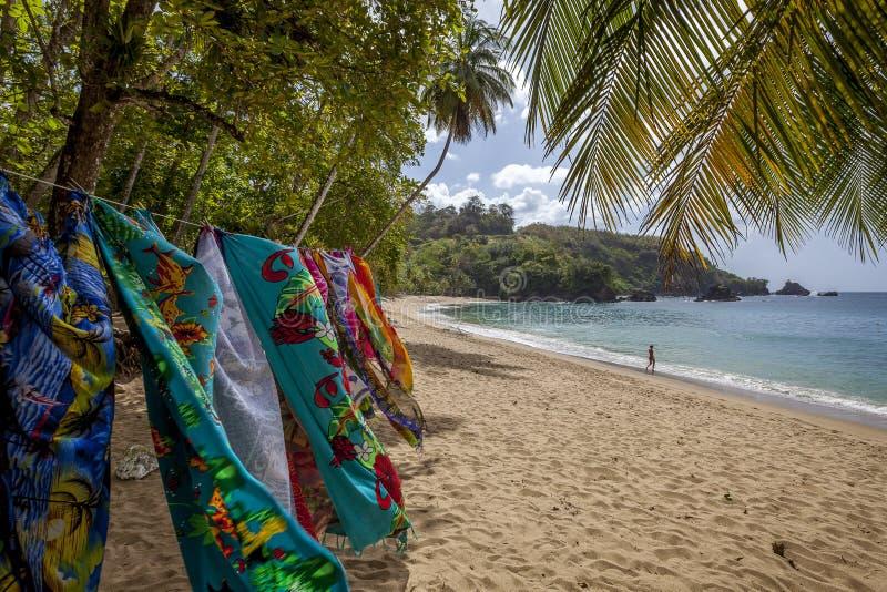 多巴哥海滩 免版税库存图片