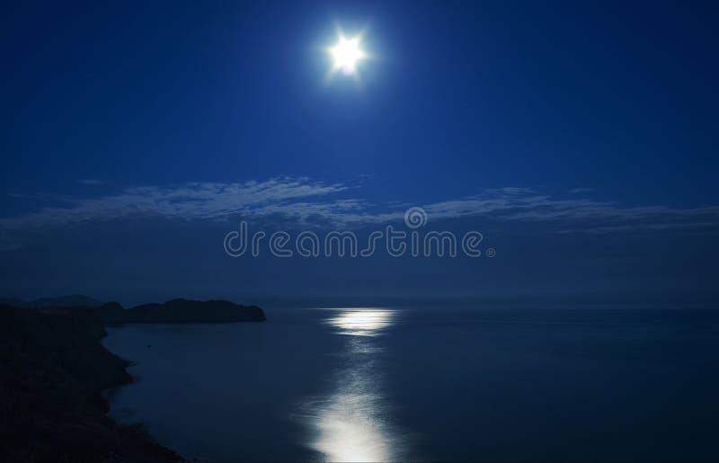 夜。在月亮下的海角变色蜥蜴。克里米亚。 免版税库存照片