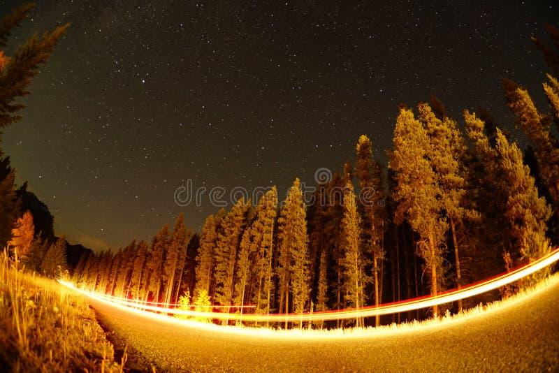 夜光和星光 库存照片