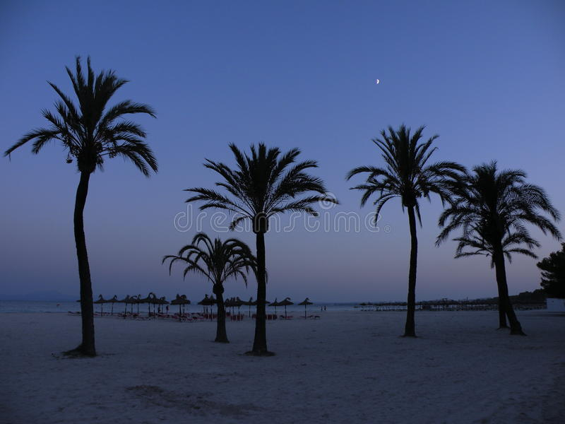 夜在马略卡 库存照片