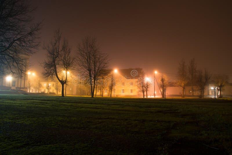 夜城市圣诞节学校光 免版税库存图片