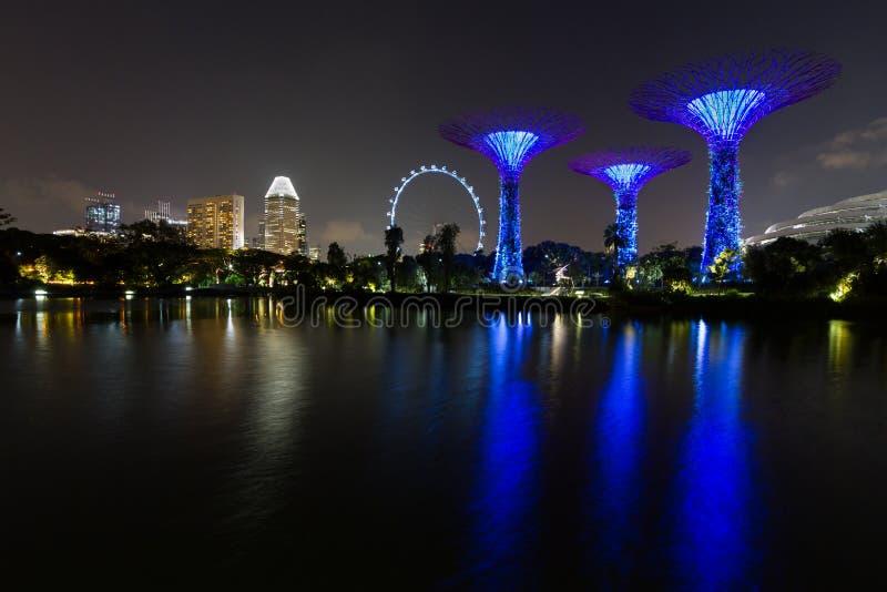 夜射击了与滨海湾公园supertrees、在水和旅馆的新加坡地平线反映的新加坡飞行物 库存照片