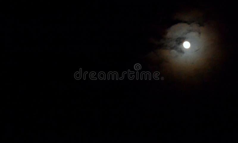 夜月光 免版税库存图片