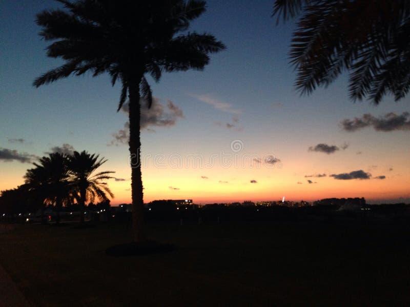 夜海滩 图库摄影