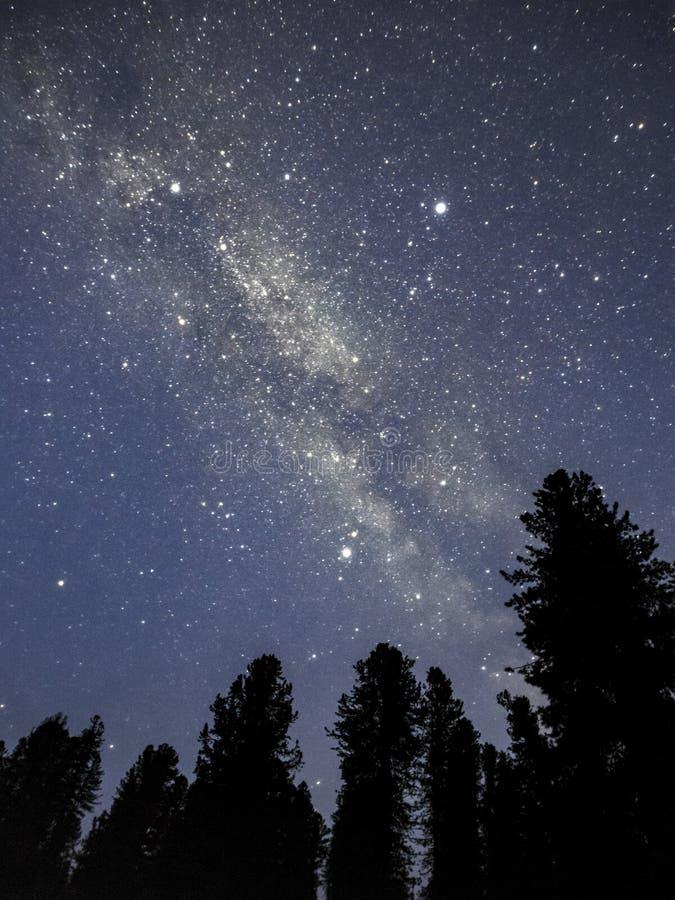 夜空,ergaki,西伯利亚 免版税库存照片