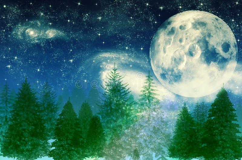 夜背景的不可思议的森林与在月亮和星天空的树 皇族释放例证