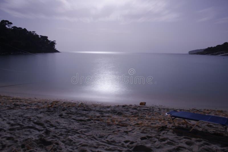 夜行动 图库摄影