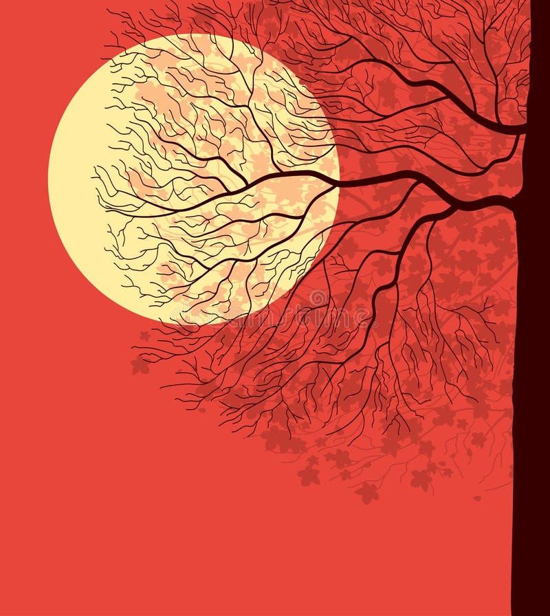 夜间下天空结构树 皇族释放例证