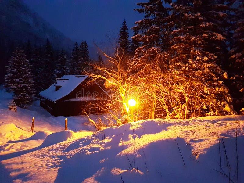 夜间森林树冰横向月亮冬天 用雪盖的木房子澄清了街道电灯笼 冬天在山和在 免版税库存照片
