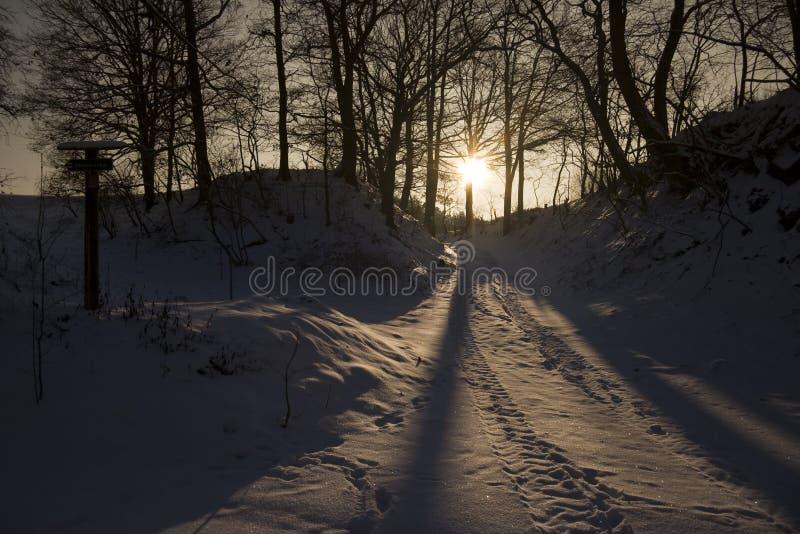 夜间横向冬天 免版税库存照片