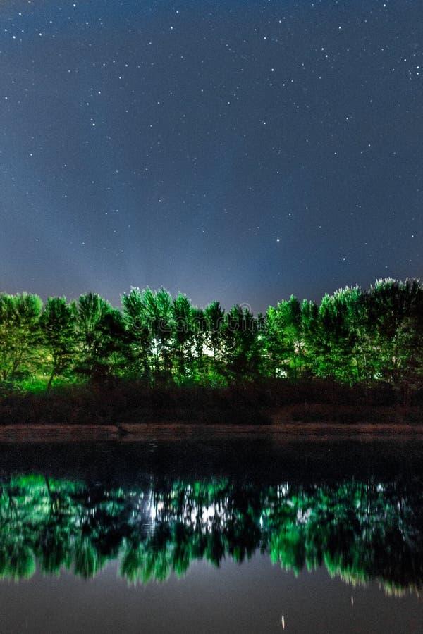 夜风景河和森林 免版税库存图片
