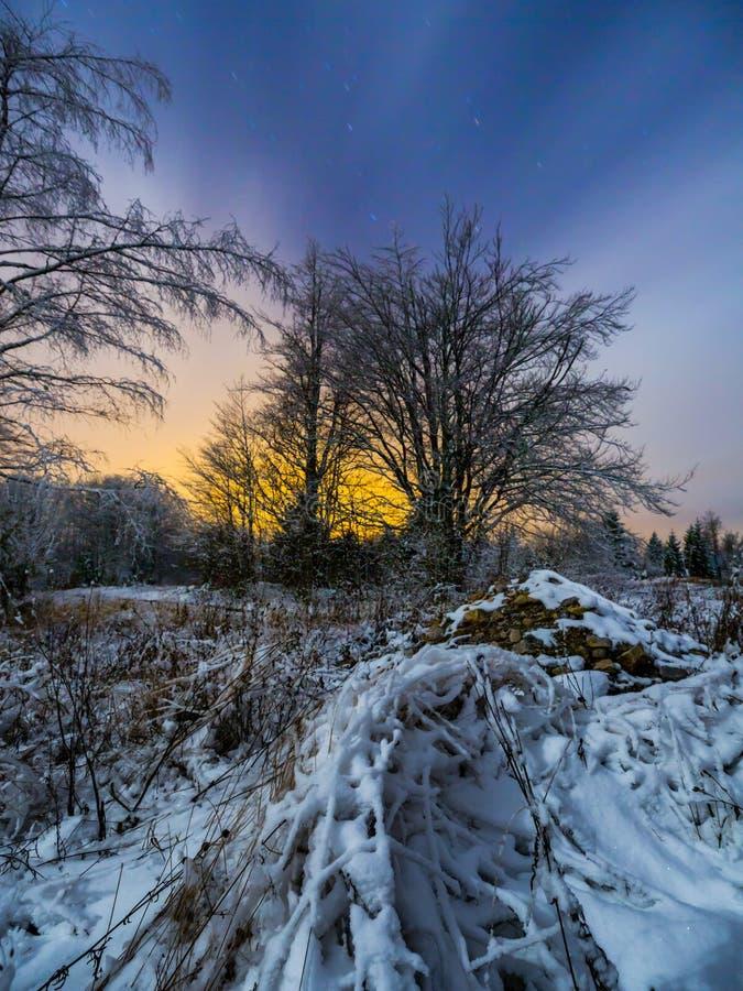 夜风景snowscape长的曝光 免版税图库摄影