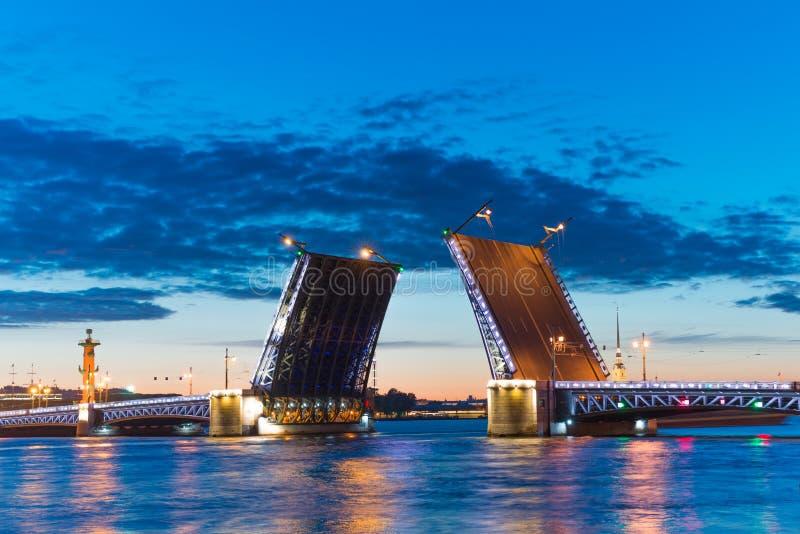 夜St 彼得斯堡、俄罗斯、宫殿桥梁和彼得保罗堡垒 免版税库存图片