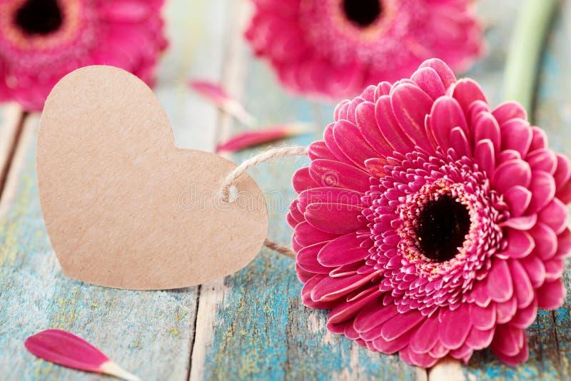 大丁草雏菊开花与问候笔记在心脏形状妇女的或在木葡萄酒背景的母亲节 图库摄影