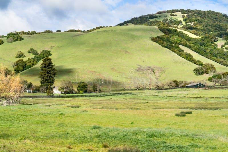 索诺马县加利福尼亚大农场土地 免版税库存图片