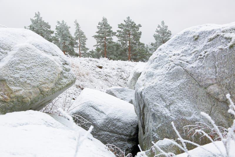 大冷淡的岩石和绿色冷淡的树在背景 惊人的冬天视图 免版税图库摄影
