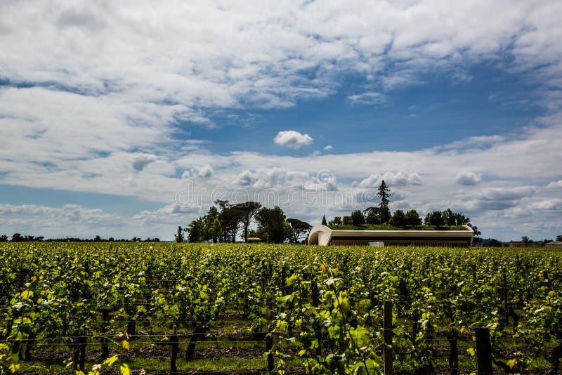 大别墅拒马Blanc豪宅和葡萄园,圣Emilion,右岸,红葡萄酒,法国 免版税库存图片
